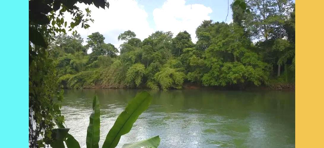 ขายที่ดินเปล่าแปลงเล็ก กาญจนบุรี ทองผาภูมิ ติดแม่น้ำแควน้อย