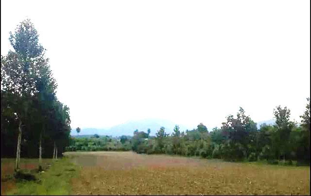 ขายที่ดินเปล่าแปลงเล็ก กาญจนบุรี